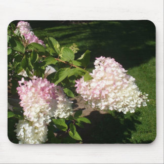 PG Hydrangea Blossoms Mousepad