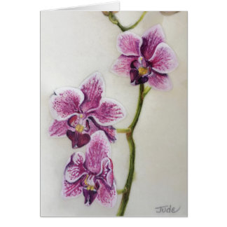 "Phalaenopsis ""Moth Orchid"" 5"" x 7"", with envelope Card"