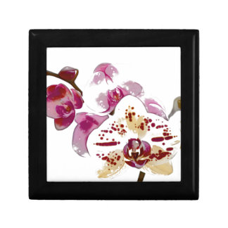 Phalaenopsis Orchid Flower Bouquet Small Square Gift Box