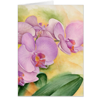 Phalaenopsis Orchid Flowers - Multi Card