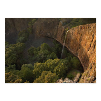 Phantom Falls Disappearing Act, Chico CA Card