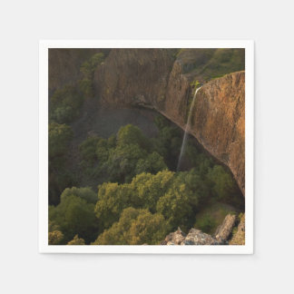 Phantom Falls Disappearing Act, Chico CA Paper Serviettes