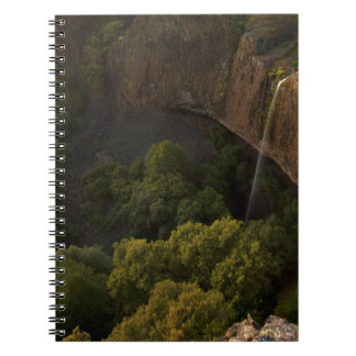 Phantom Falls Disappearing Act, Chico CA Spiral Notebooks