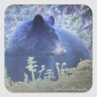 Phantom The Black Bear Square Sticker