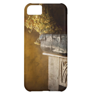 Pharmacy - The apothecarian iPhone 5C Case