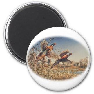 Pheasants Aloft - Great Hunting on the farm 6 Cm Round Magnet