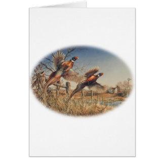 Pheasants Aloft - Great Hunting on the farm Greeting Card