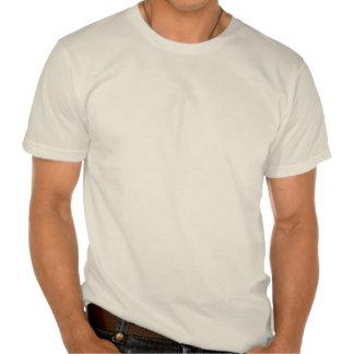 Phi, the Golden Ratio. (organic colors) T Shirts