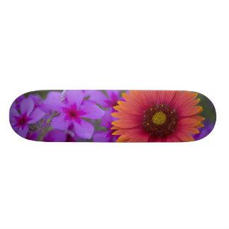 Phlox and Indian Blanket near Devine Texas 21.3 Cm Mini Skateboard Deck