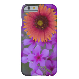 Phlox and Indian Blanket near Devine Texas Barely There iPhone 6 Case