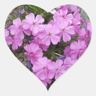 Phlox Dark Pink Heart Sticker