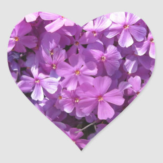 Phlox Dark Pink Pretty Heart Sticker