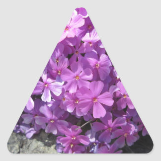 Phlox Dark Pink Pretty Triangle Sticker