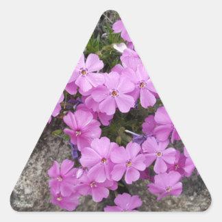 Phlox Dark Pink Triangle Sticker