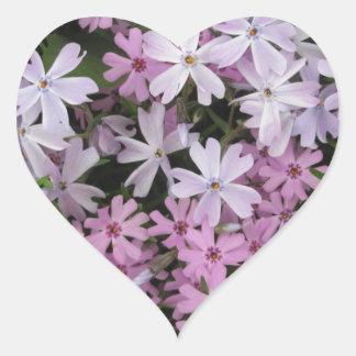 Phlox Light Pink Heart Sticker