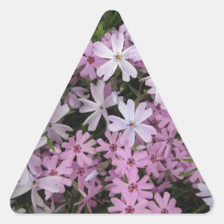 Phlox Light Pink Triangle Sticker