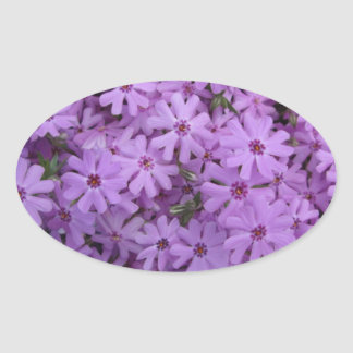 Phlox Purple Oval Sticker