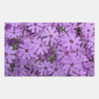 Phlox Purple Rectangular Sticker