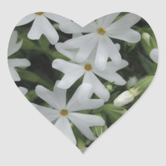 Phlox White Heart Sticker