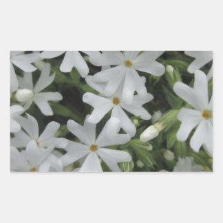Phlox White Rectangular Sticker
