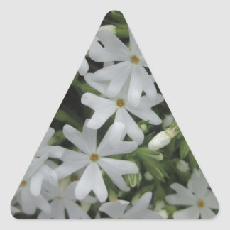 Phlox White Triangle Sticker