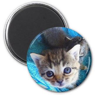 Phoebe 6 Cm Round Magnet