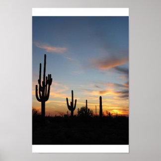 Phoenix Arizona cactus sunset Poster