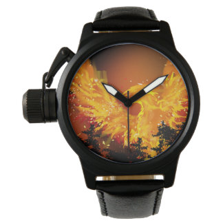 Phoenix in Flight Watch