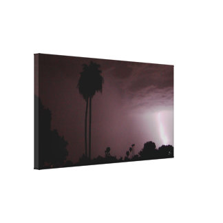 Phoenix Monsson Canvas Print