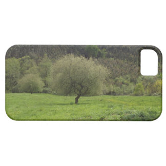 Phone 5 Fundas Landscapes iPhone 5 Covers