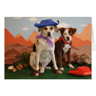 Photo, 2 western dogs card