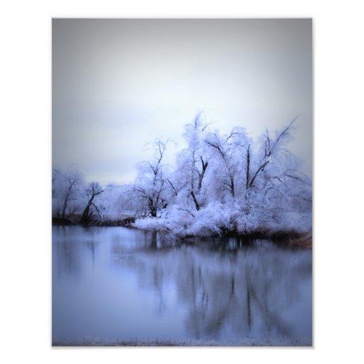 Photo Enlargement, Willow Winter Wonderland