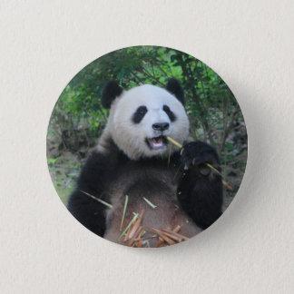 Photo Giant Panda 6 Cm Round Badge