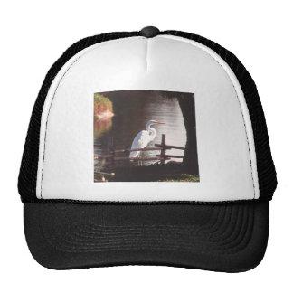 Photo Landscape Trucker Hats