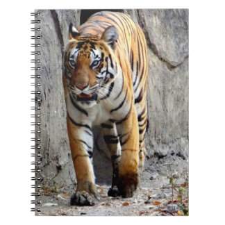 Photo Note Book, 12 Pages Save Tigers Spiral Notebook