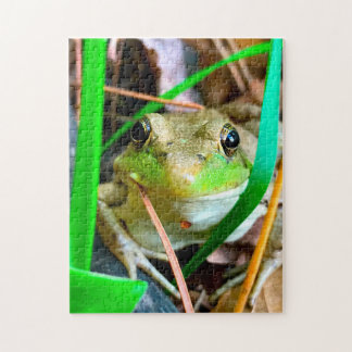 Photo of a Frog Minnesota. Jigsaw Puzzle