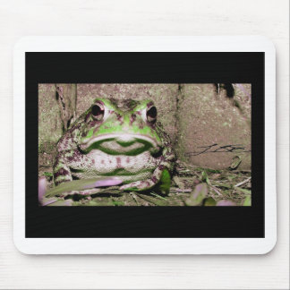 Photo of a funnycolorful fat toad frog mouse pad