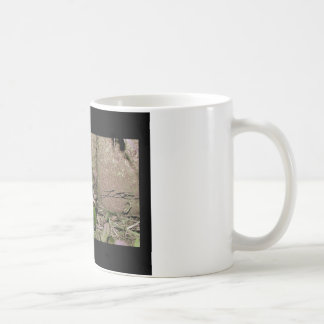 Photo of a funnycolorful fat toad frog basic white mug