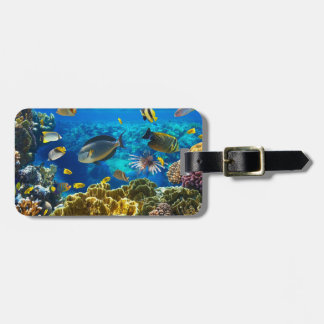 Photo of a tropical Fish on a coral reef Luggage Tag