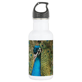 Photo of Beautiful Peacock with Spread Feathers 532 Ml Water Bottle