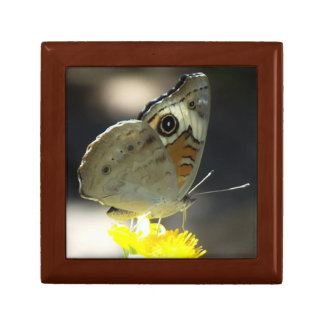 Photo of Buckeye Butterfly on a Yellow Wildflower Small Square Gift Box