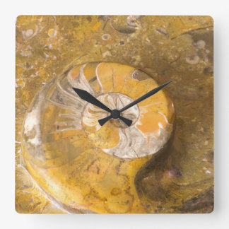 Photo of Carved Bowl Made of Fossils in Rock Square Wall Clock