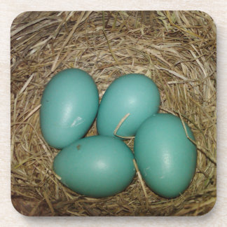 Photo of Four Blue Robin's Eggs in a Nest Drink Coasters