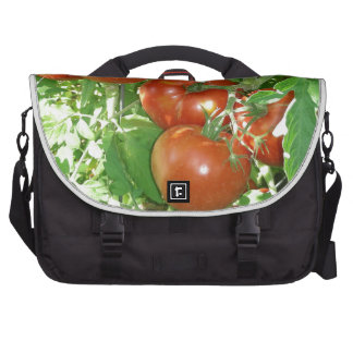 Photo of ripe red tomatoes on the vine laptop bag