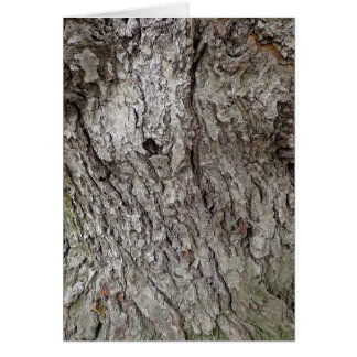 Photo of  Tree Bark Card