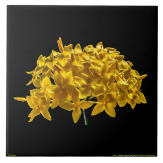 PHOTO OF YELLOW FLOWER ON A LARGE CERAMIC TIle