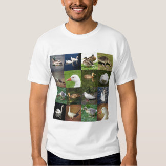 Photo Patchwork Square - Birds T Shirts