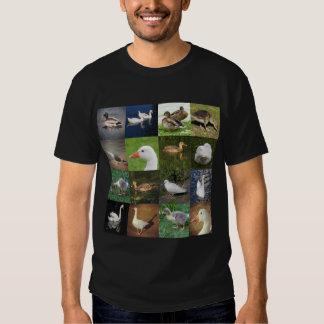 Photo Patchwork Square - Birds T Shirts