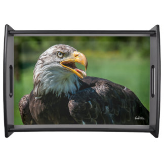 Photo plate of eagle serving tray