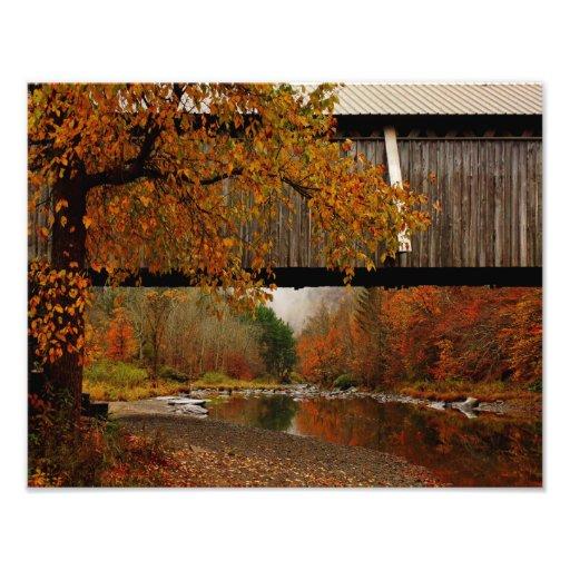 Photo Print-Autumn Beaverkill Covered Bridge
